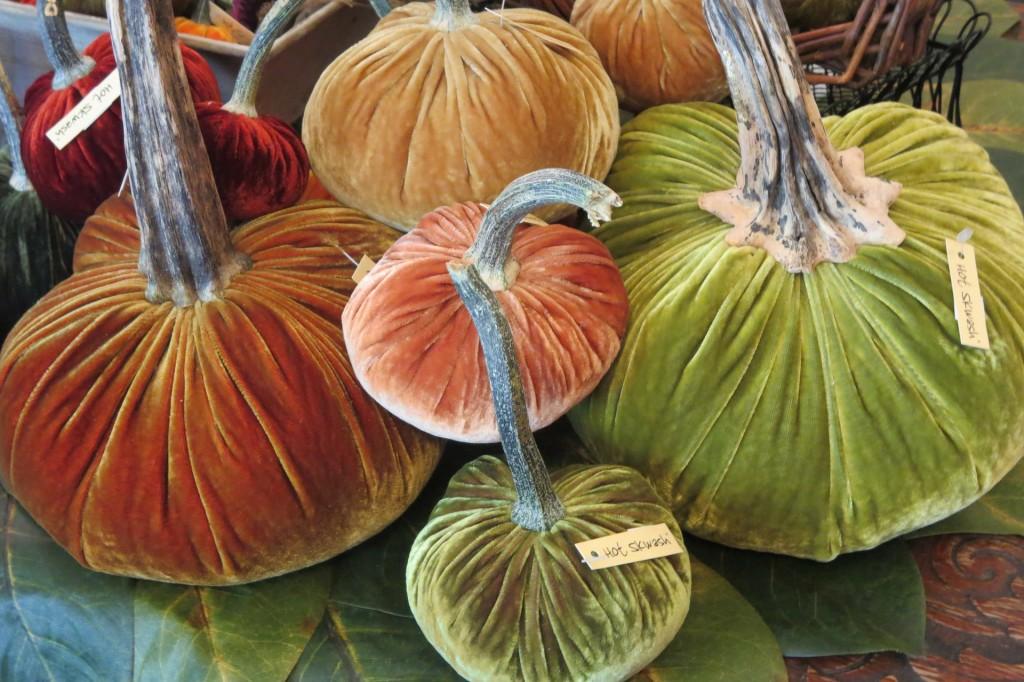 pumpkins-187962_1920